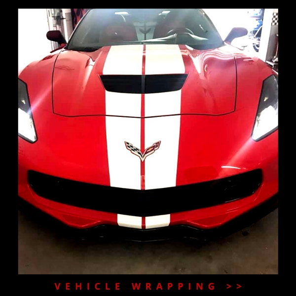 Click here to explore our vehicle wrapping services